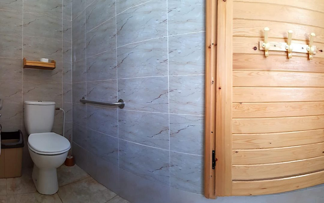 Accessible Bathroom Adaptations to Sahara Desert
